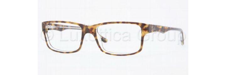 ray ban glasses frames sears
